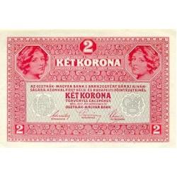 1919 - Austria P50 2 Kronen banknote