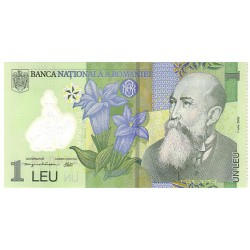 2005 - Romania   Pic  117           1 Lei banknote