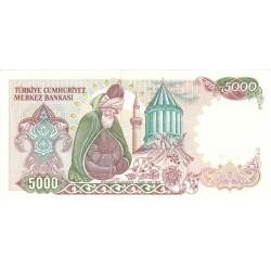 1985 - Turkey   Pic  197             5.000 Liras  banknote