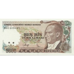 1990 - Turquia   Pic  198             billete de   5.000 Liras